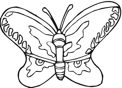 free coloring book pages of butterflies free printable butterfly coloring pages for kids
