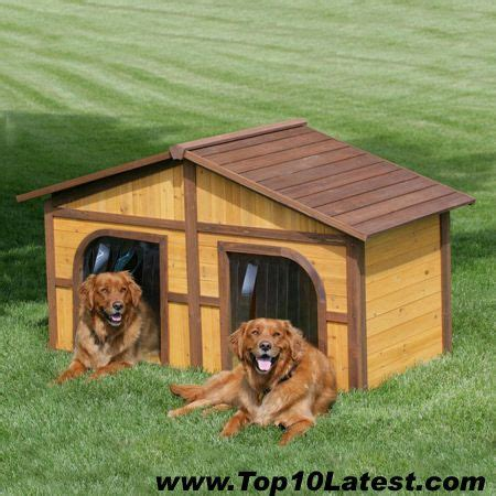dog house duplex dog house duplex dog house pets pinterest