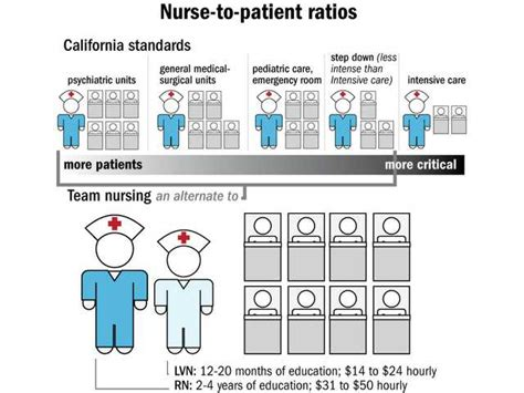 ohio nursing home staffing ratios images frompo