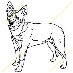 Blue Heeler Dog Coloring Page Sketch sketch template