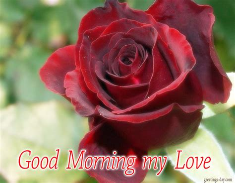 good morning love greetings greeting cards for every day december 2015