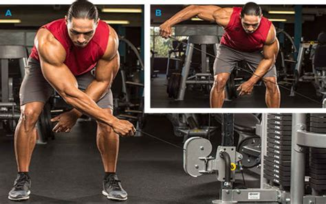 bent over lateral raises on incline bench incline bench dumbbell rear flyes benches
