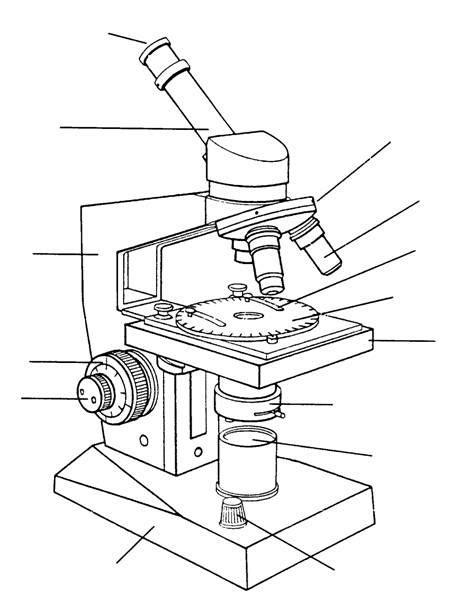 imagenes de un microscopio para dibujar faciles microscopios para dibujar imagui
