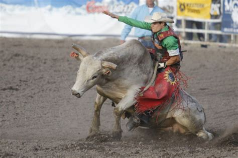 bitterroot motors missoula missoula s markiss rides touring pro bulls to pbr finals