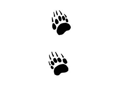 bear track tattoo designs tracks huellas animales and hennas