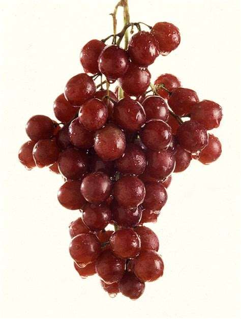 Grapes Diet Detox by Lose 7 Lbs In 30 Days With Detox Diet