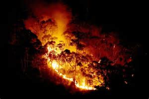 Victoria: Strong winds are fanning the massive bushfires