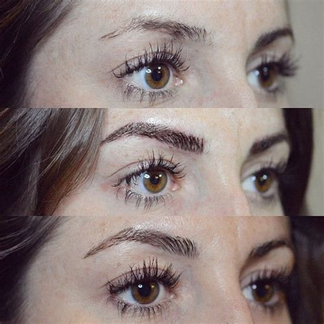tattoo eyebrows grow back 8 best images about brow shapes on pinterest plymouth