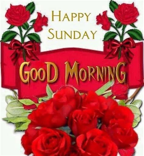 imagenes good morning happy sunday happy sunday good morning pictures photos and images