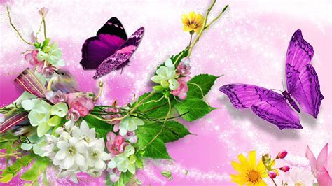 Bright bird butterflies blossoms wallpaper   AllWallpaper