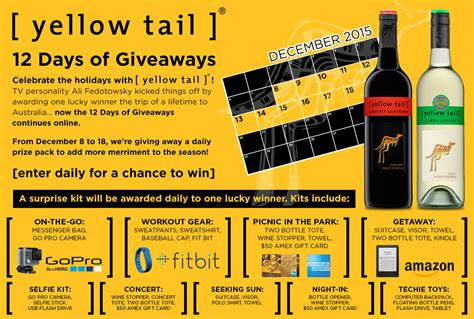 Go Pro Daily Giveaway - yellow tail celebrates the holidays with ali fedotowsky and the 12 days of giveaways