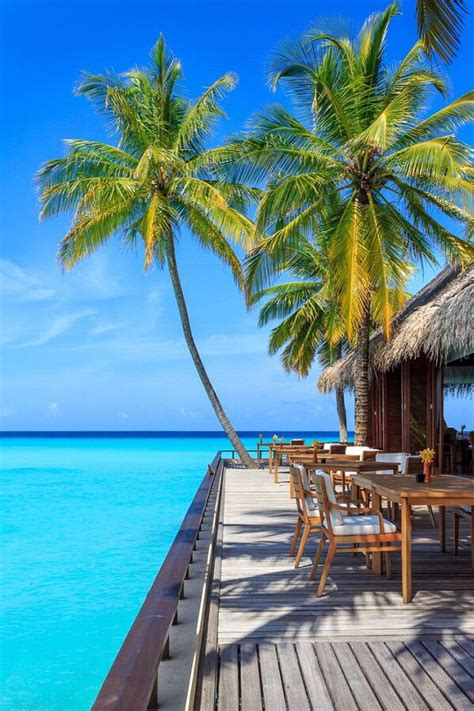 tropical paradise ideas  pinterest relaxing
