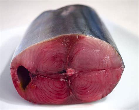 Fish Maguro Sashimi katsuo japan s ubiquitous tuna the japan times