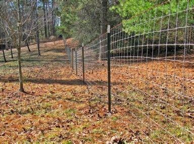 astounding goat invisible fence  cheap goat fencing ideas
