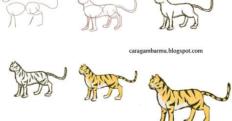 cara dan teknik menggambar untuk pemula cara menggambar harimau