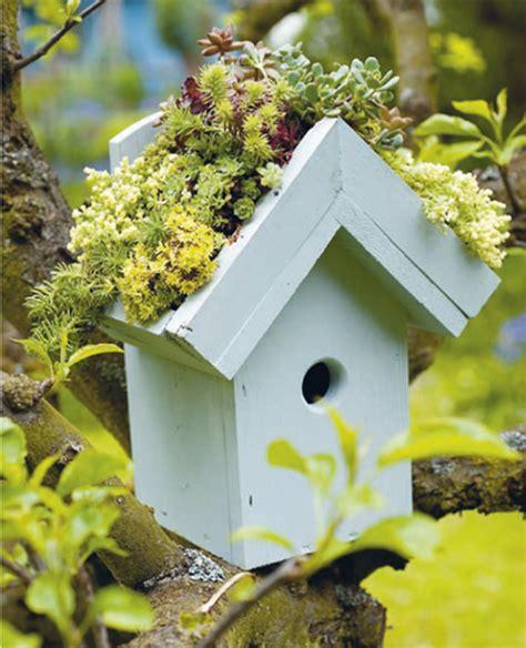 giardino in miniatura 16 idee di giardini in miniatura da creare con il riciclo