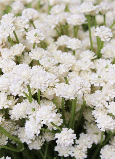 Home Decor Baskets cream baby s breath silk flowers rustic wedding afloral com
