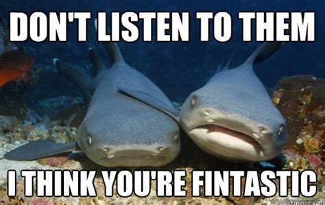 Funny Shark Memes - dont listen to them i think youre fintastic weknowmemes