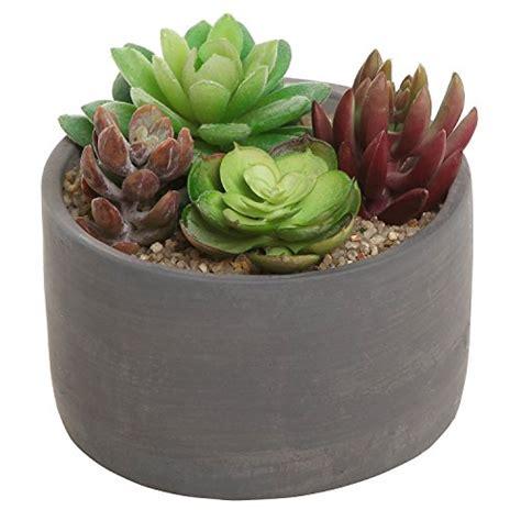 small modern  indoor gray cement flower planter pot
