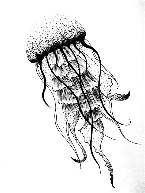 Drawing Jellyfish by Jellyfish Dotwork Design Jules Verne Graphic