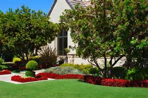 residential landscaping project 7