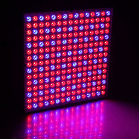indoor greenhouse with grow lights 45w 200w reflector cup full spectrum led grow lights for
