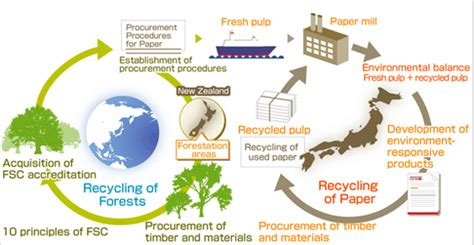 Procedure Of Paper - creating environmentally friendly paper environmental