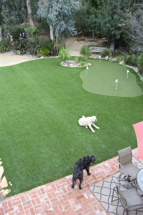backyard  la jolla calif features  synlawn golf