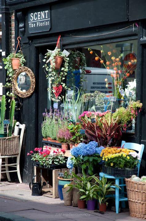 Flower Store by Best 25 Brighton Ideas On Brighton