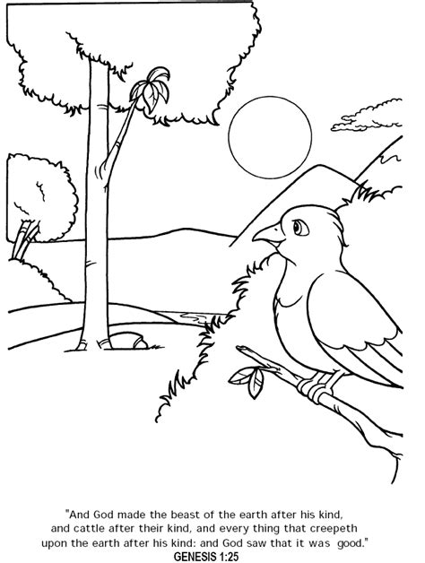coloring pages creation animals the creation coloring page