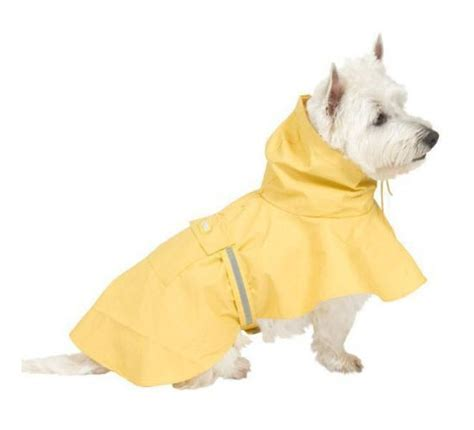 raincoats for dogs coat quotes