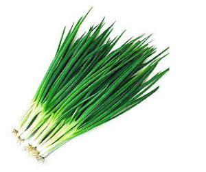 Bibit Daun Bawang Merah benih daun bawang kecil