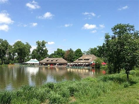 boat house forest park 93 best images about things to do in the lou on pinterest parks history museum and art museum