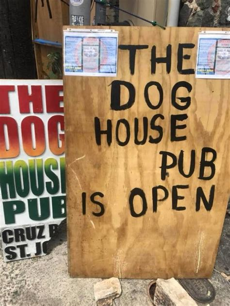 dog house pub news of st john an online blog about the daily happenings of st john usvi