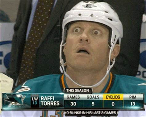 San Jose Sharks Meme - san jose sharks on tumblr