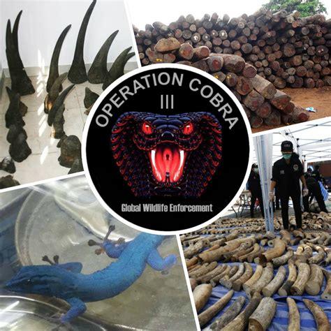 successful operation highlights growing international