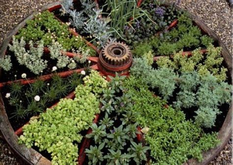 herb garden design good medicinal herbs for wagon wheel herb garden design