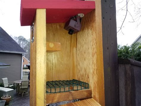 view  bird box camera   mobile phone green