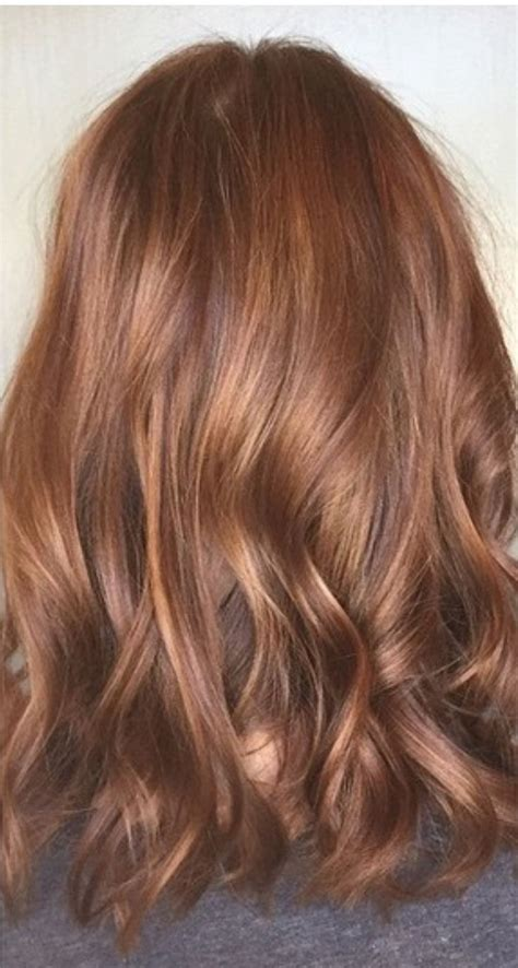 copper auburn hair color 25 best ideas about medium auburn hair on pinterest