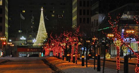 montreal s official christmas tree to be set up at place