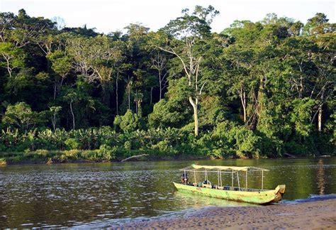 amazonas hängestuhl am amazonas abenteuer in der h 228 ngematte reise