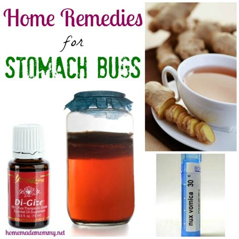 Home Remedies For Stomach Virus by Stomach Flu Treatment What Is Stomach Flu Rachael Edwards