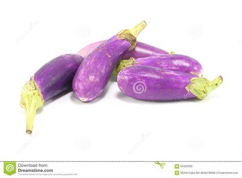 brinjal color eggplant stock photo image 63402959