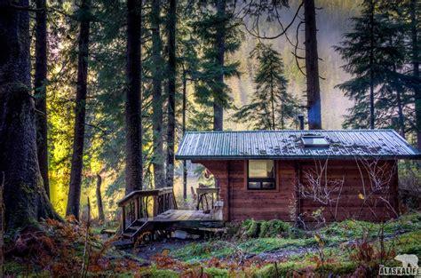 alaska cabin late season blacktail deer blacktail in sitka