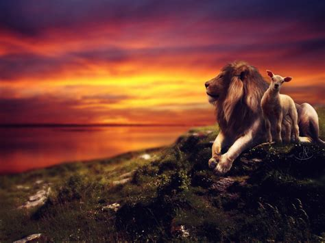 the lion and the the lion and the lamb by xxeluhfunt on