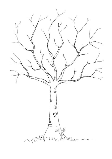 Printable Tree Template | printable tree without leaves sketch templates