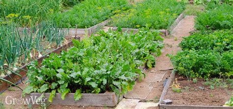 vegetable garden planner garden planning apps growveg