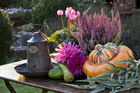 fiori da giardino autunnali 10 piante per decorare il balcone d autunno donna moderna