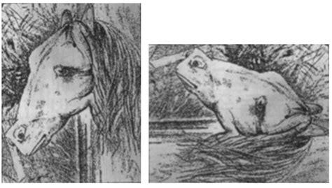 imagenes con cosas ocultas el juego del caballo y el animal oculto 191 ser 225 s capaz de