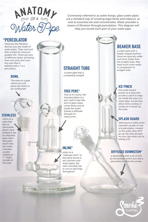 What Do The Different how does a bong work a guide to the water pipe leafly